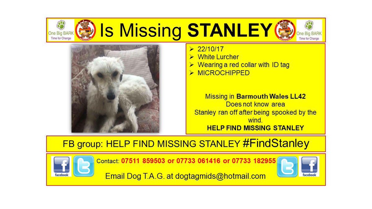 RT @DogTAGMids: .@Barmouth_Daily URGENT SHARES NEEDED missing in #Wales does not know area #HELP #missingdog https://t.co/7Jq1JHnEPy