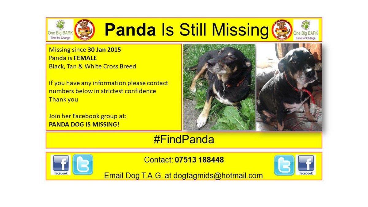 RT @DogTAGMids: #FindPanda missing but not forgotten #lostdogalert Plse let us know Panda is safe https://t.co/rU8HZhpWQT