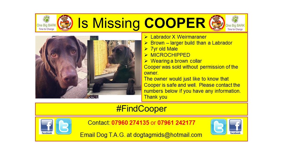 RT @DogTAGMids: #FindCooper sold without permission #Burntwood #whereareyou WE MISS YOU #scanme MICROCHIPPED https://t.co/o4njtt2GL8