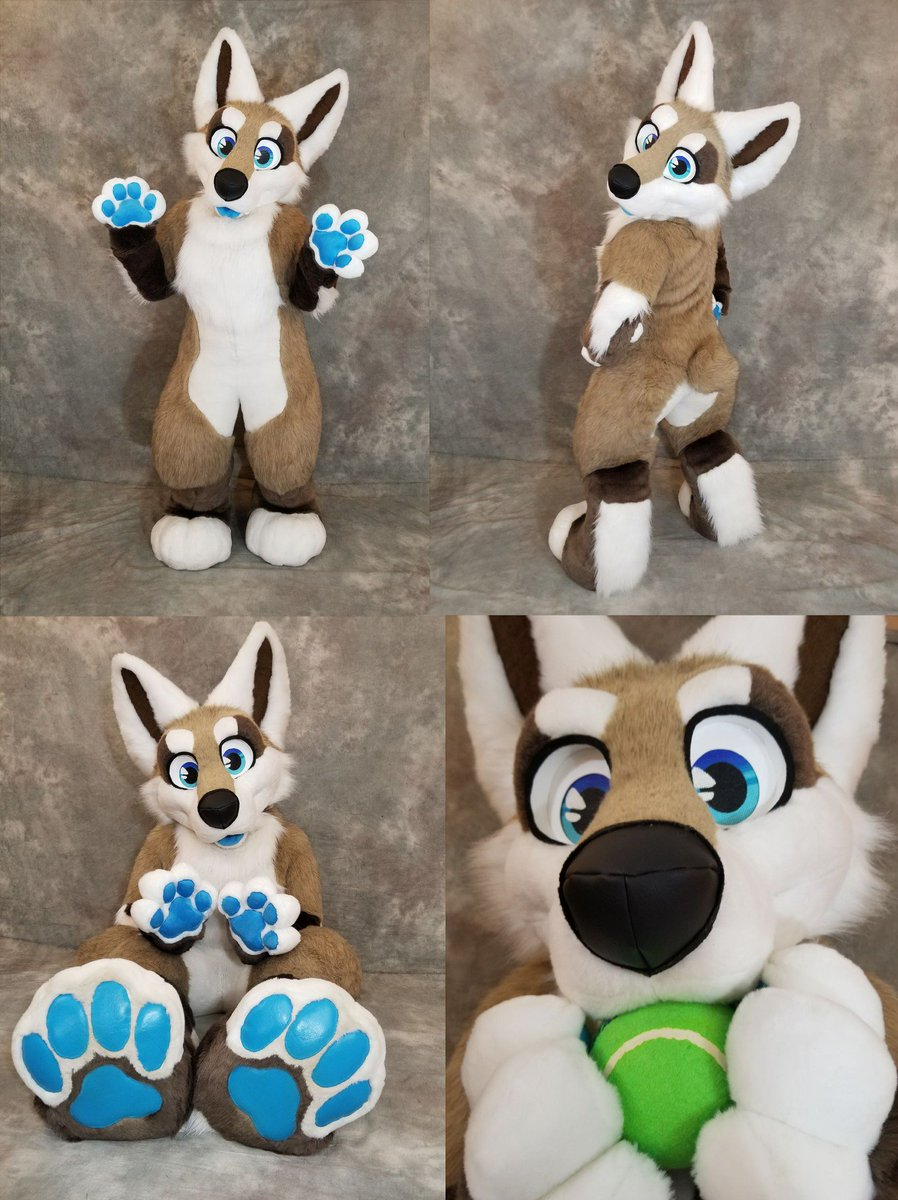 RT @DoggyRyo: Corgi fursuit is now open for offers! DM me with offers, serious buyers only. 🎾 https://t.co/iIvDCpmnUd