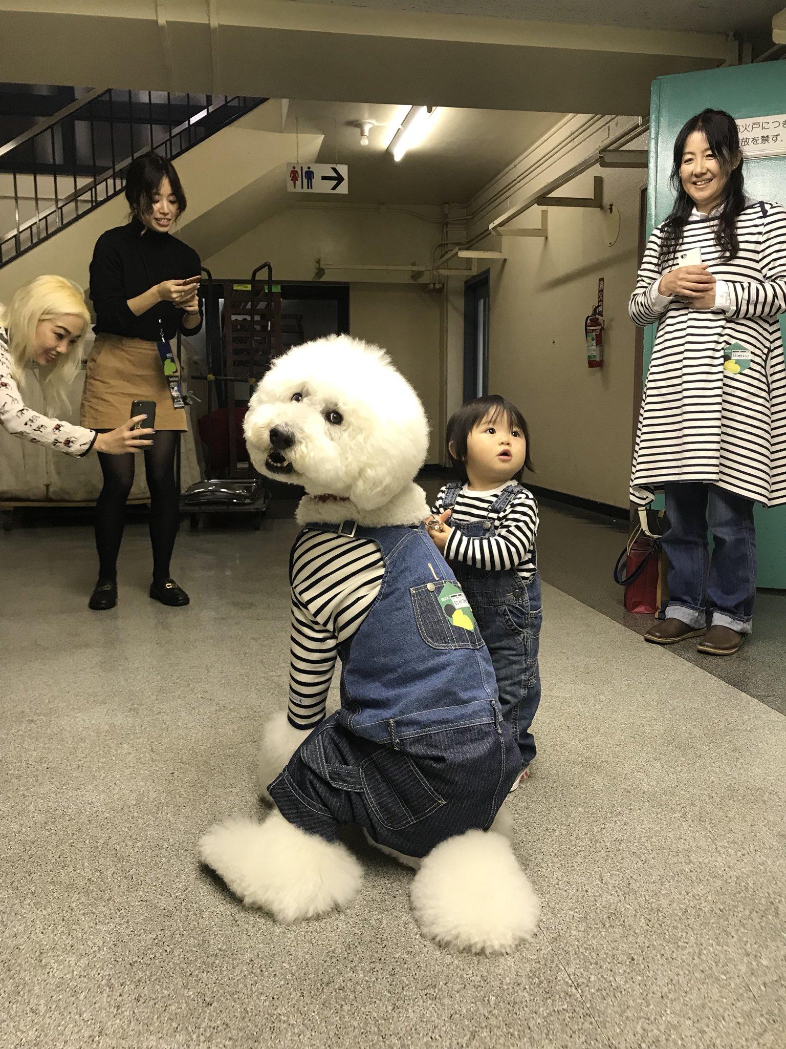 I ❤️ Tokyo https://t.co/3Obzet2fDk