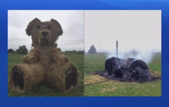 Vandals burn down N.S. farmer's 'beloved bear' hay sculpture