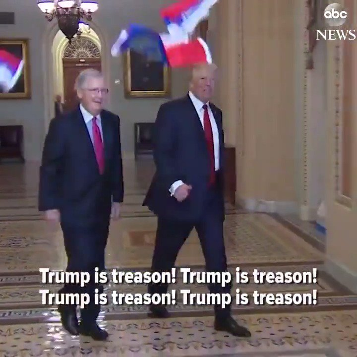 Protester tosses Russian flags at Pres. Trump as he arrives at Senate GOP luncheon, yelling 'Trump is treason!' https://t.co/tozCgnryCy