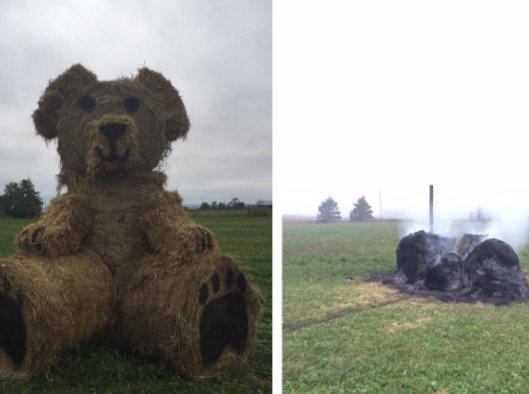 Vandals burn Nova Scotia farmer's beloved bear sculpture