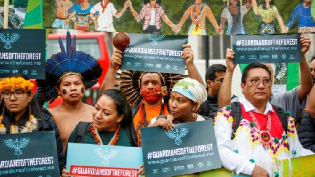 Indigenous groups warn Paris accord imperiled by deforestation