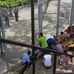 Manus Island detainees plead to Papua New Guinea for transfer to 'safe' nations