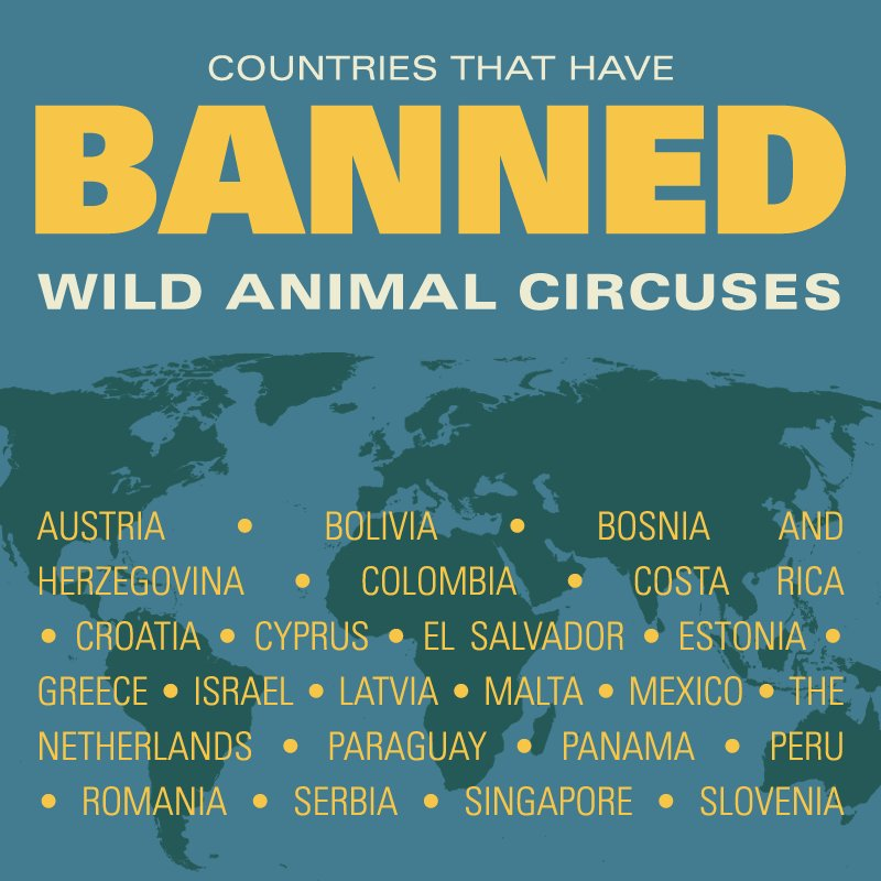 RT @peta: It's time for ALL countries to do the same! ???? https://t.co/yeJElGXVz6