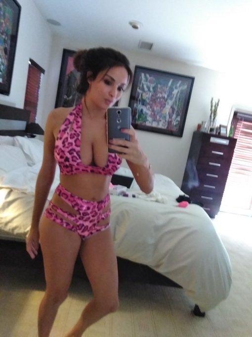Trying my new bikini 🐩🐯 https://t.co/a4VIO412tP