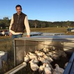 Cricketing star's grandson Tom Bradman takes agricultural shot with 'regenerative' poultry farm