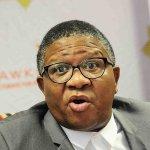 Harass criminals' unrepentant Mbalula tells police