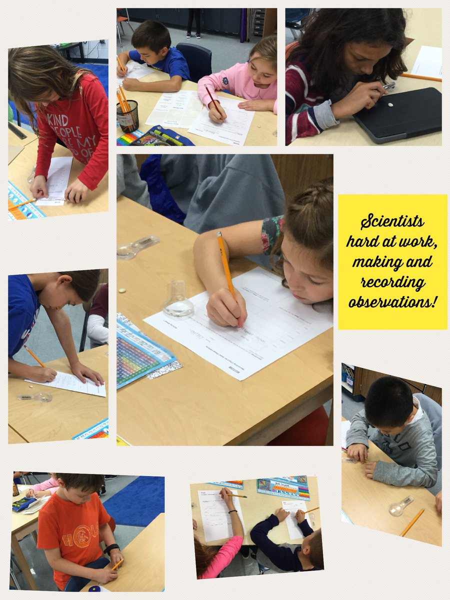 test Twitter Media - 3K scientists making observations about seeds! #d30learns #wbplays https://t.co/QCrFCSAmsU