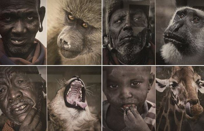 Chinese museum removes pictures comparing black people to wild animals