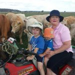 Cattle farmers near Oakey, Williamtown Defence bases worried they might be selling PFAS contaminated beef