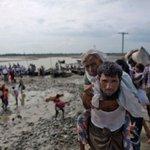 Elephant tramples Rohingya refugees in Bangladesh