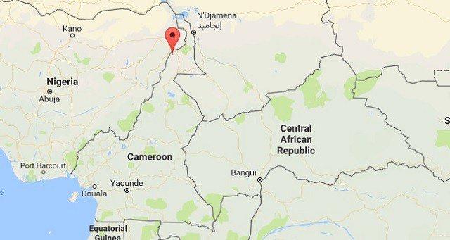 Boko Haram fighters surrender in northern Cameroon