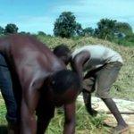 Apac Farmers Reap Big