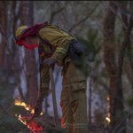 Firefighters gaining edge in California wildfires that have killed at least 40