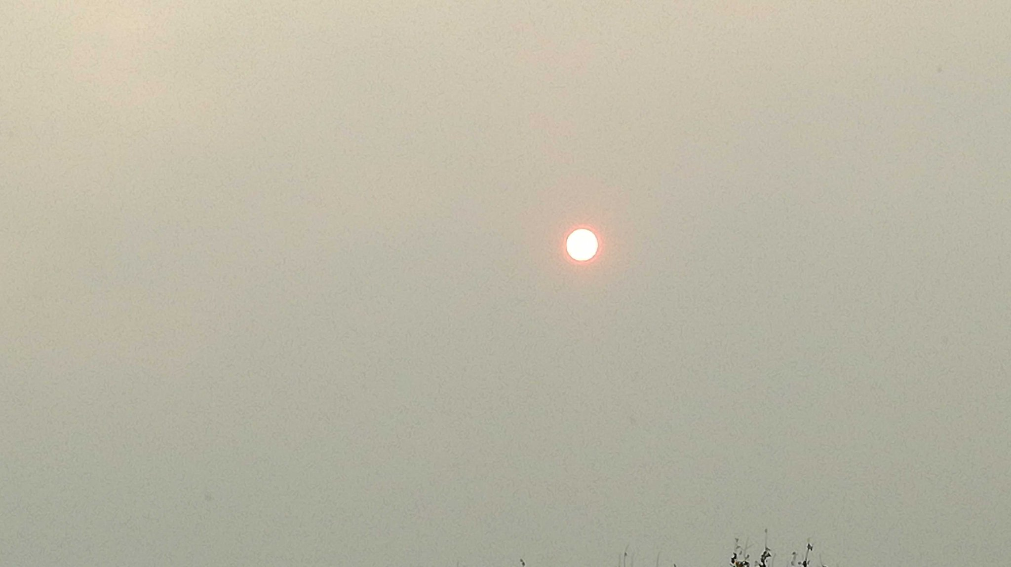 Look up! #redsun over London! Picture doesn't make justice but it's ORANGE! https://t.co/Fnp5gqTfqm