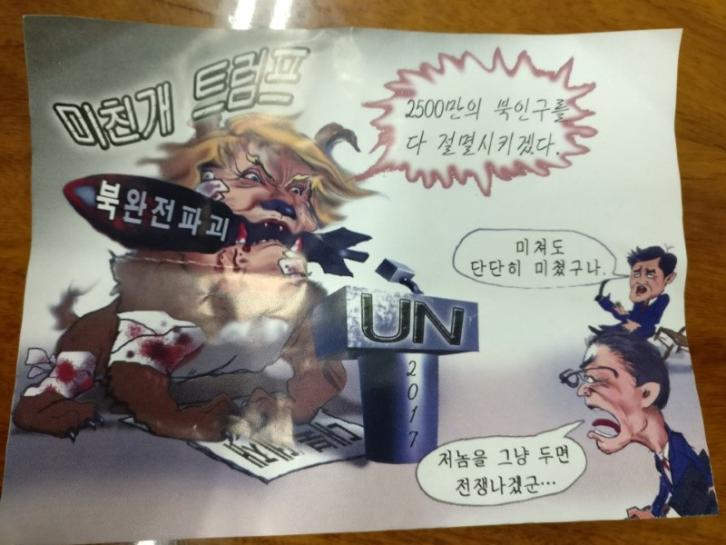 'Mad dog' anti-Trump leaflets, suspected floated in from North Korea, turn up in Seoul