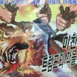 Alleged North Korean Anti-Trump leaflets float into Seoul