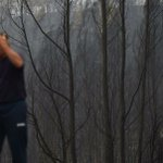 Wildfires kill 39 in Portugal and Spain