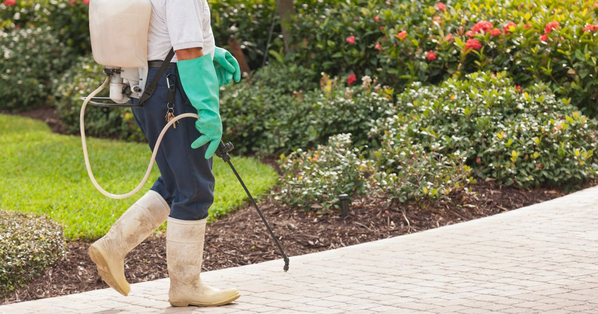 Bizarre EU rules could see gardeners forced to weed their gardens by hands