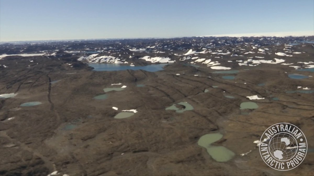Climate change may cause huge expansion to ice-free areas across Antarctica