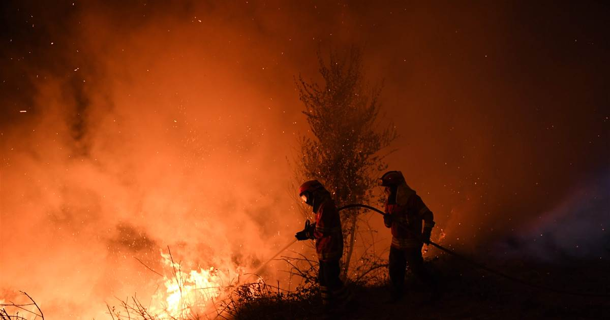 Anger grows over Portugal and Spain's 41 fire deaths