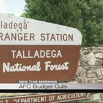 Budget cuts leave Alabama Forestry Commission locations understaffed