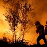 Portugal's government faces no-confidence vote after forest fires kill 41
