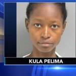 Mother admits drowning 2 young boys in Delaware apartment, police say