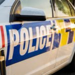 Dunedin man injured in crash during police chase
