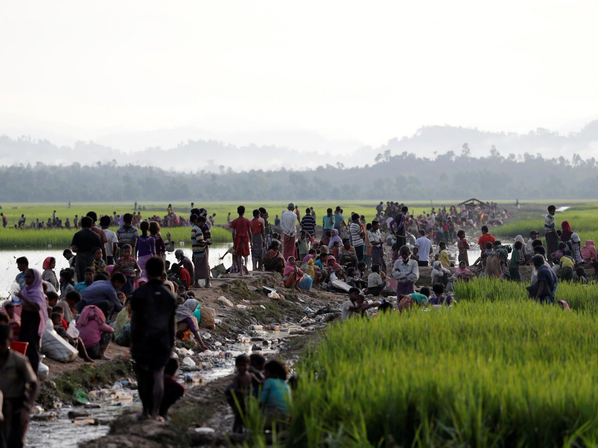 Rohingya crisis: Burma killed hundreds of men, women and children during expulsion campaign, Amnesty says