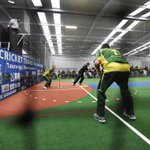 NZ face Aussies in indoor cricket test series at Mount