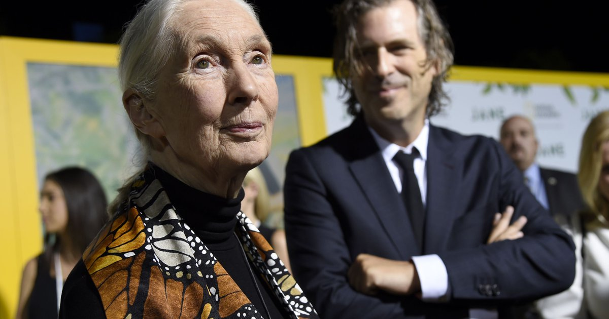 Jane Goodall: Stop destroying the planet or 'we may not even be on it anymore'