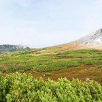 S'porean woman who went missing on Hokkaido mountain found alive