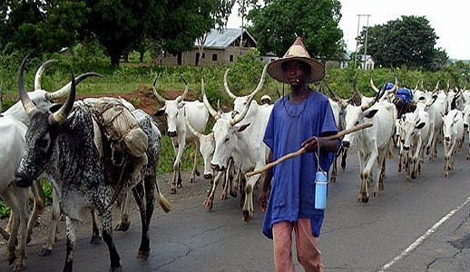 Herdsmen, farmers sign peace pact in Niger