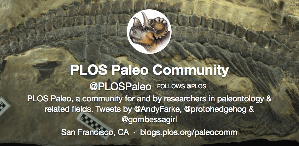 test Twitter Media - Six new #paleontology articles published in @PLOSONE, follow @PLOSPaleo feed to see featured articles https://t.co/odsdx35PjE https://t.co/CvZ5WlY3e9