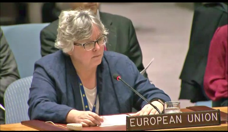 test Twitter Media - Achieving a two-state solution is the central element of #EU policy in the #MiddleEast    --@EUAmbAdamson addressing #UNSC https://t.co/R5JCb9f5XK