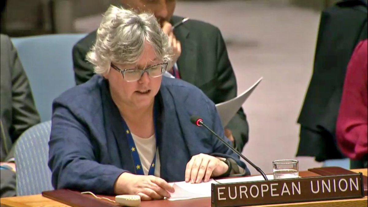 test Twitter Media - #EU firmly condemns terror attacks and violence from all sides and in any circumstances --@EUAmbAdamson at #UNSC mtg on #MiddleEast https://t.co/M7wonMsRlW