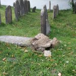 Teens arrested in vandalism at Jewish cemetery in Romania