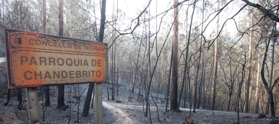 La carta de desesperación de un policía atrapado en el incendio de Galicia ▶