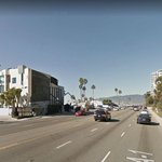 Bicycle Rider Dies in Traffic Collision on Pacific Coast Highway Sunday Night