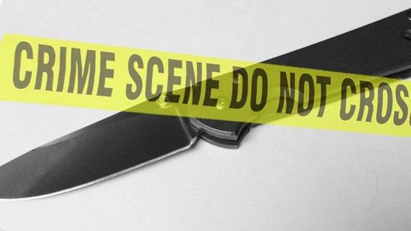 Ohio teen accused of stabbing ex-girlfriend 20 times