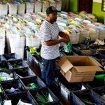 Government declares October 26 public holiday for voting