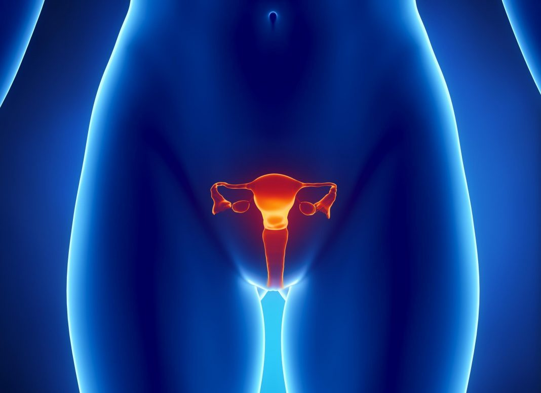 Eleven things you need to know about cervical cancer