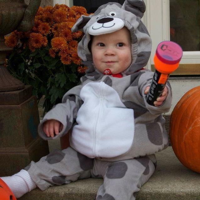 RT @katiebaby83: #tbt to Gavin's puppy Halloween costume! 🐶 https://t.co/OELrqnT0lF