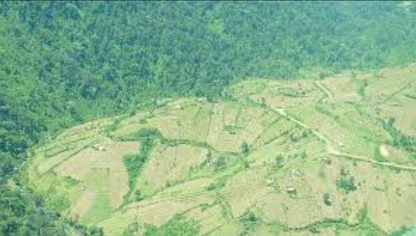 Samburu residents oppose destruction of forest