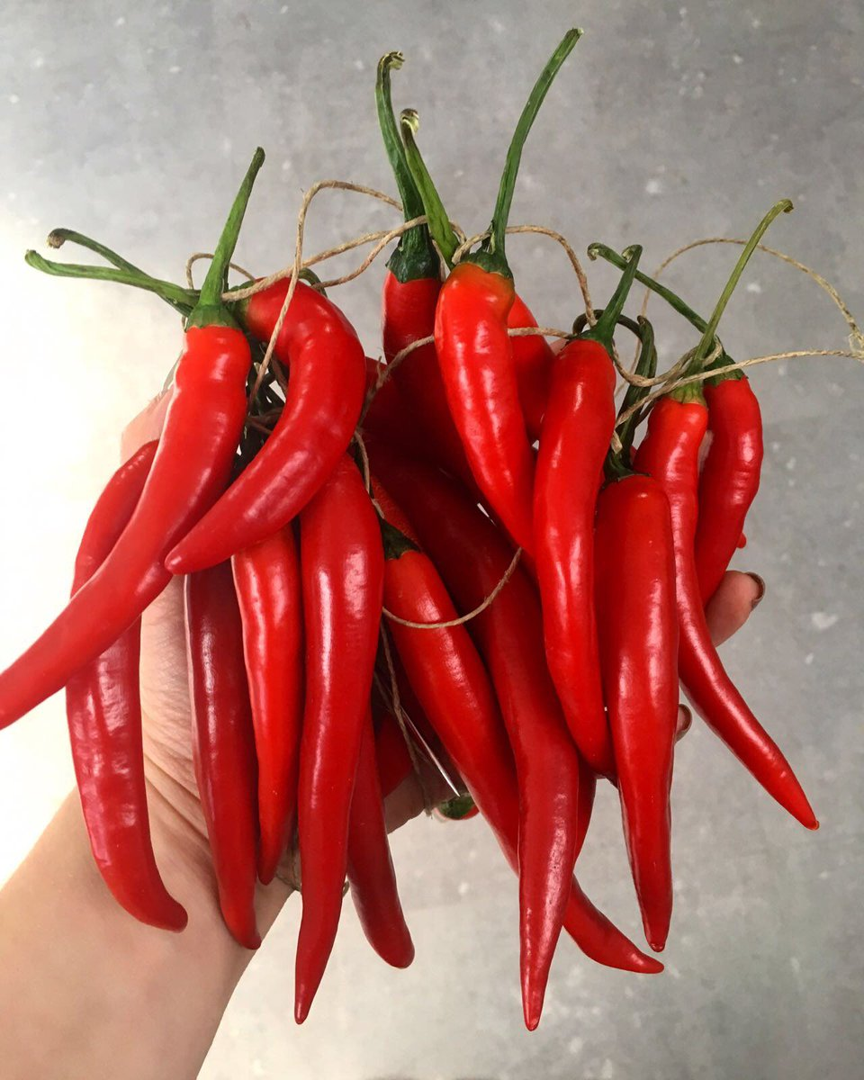 The mighty chillI! ???? What do you guys cook up with them?  https://t.co/IHkcfEbo5L https://t.co/tFppgercOo