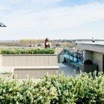 Potager urbain: quand le végétal s'invite en ville